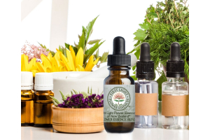 The Difference Between Herbs, Aromatherapy, Flower Essences, and Other Modalities
