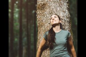 Vibrational Healing Signatures and Chakra Imbalances