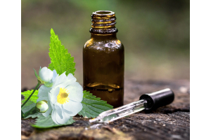 What You May Not Know About Flower Essences