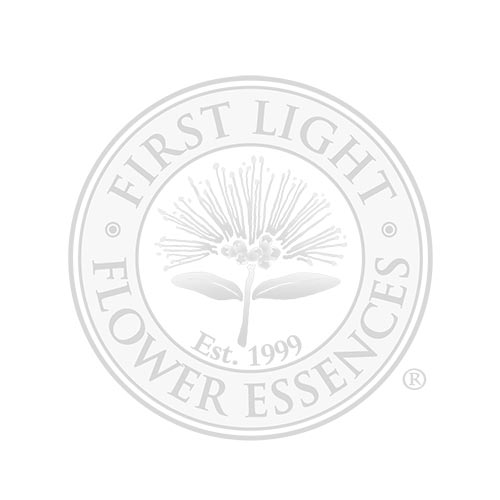 Blank Bottle with First Light® Flower Essence Treatment Bottle Label