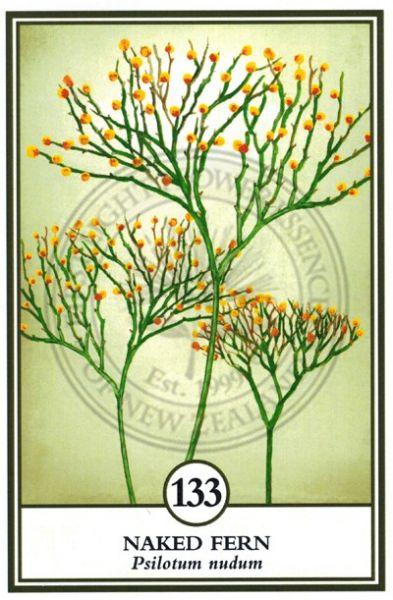 Flower Essence Cards No's 129-144 Large