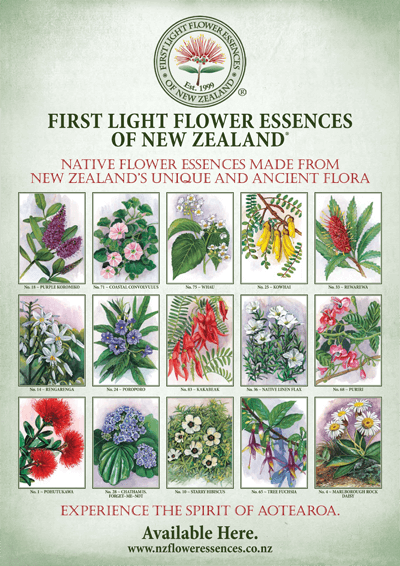 First Light® A2 Poster featuring 15 Stunning Pictures of NZ Native Plants
