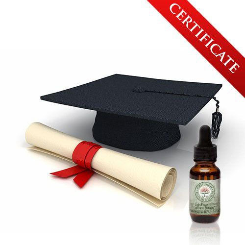 Administration Fee for Certificate in New Zealand Native Flower Essence Therapy (Cert. NZNFE)