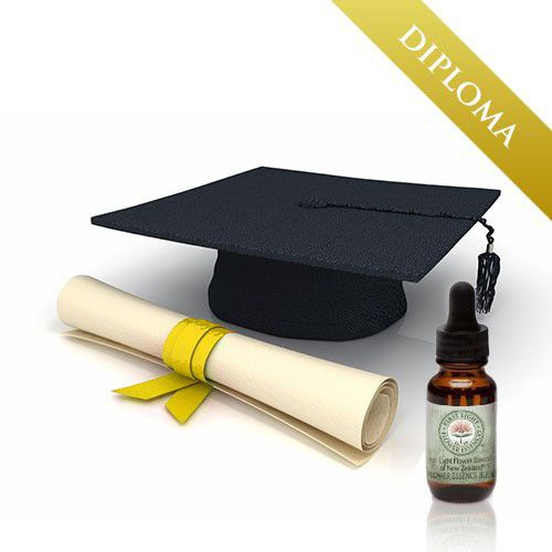 Administration Fee for Diploma in New Zealand Native Flower Essence Therapy (Dip. NZNFE)