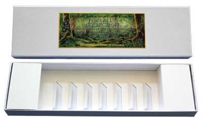 The Fern Ally Collection - Empty Presentation Box