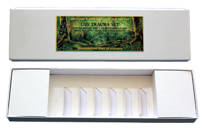 The Fern Collection - Empty Presentation Box