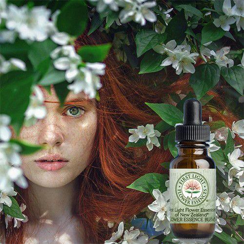 First Light® Nature's Healing Bouquet Blend