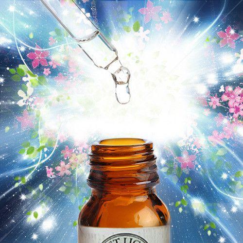 First Light® Power Flower Essence©