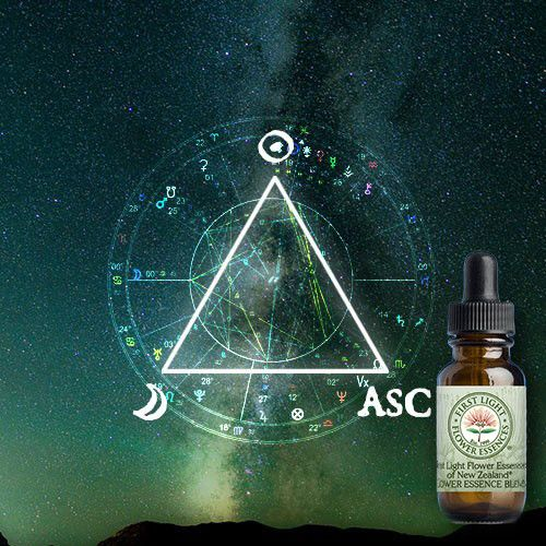 First Light® Triangle of Power Blend©