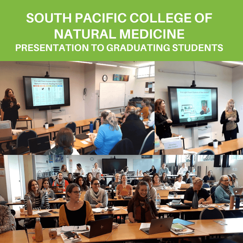 25 May 2021 – Presenting at South Pacific College!