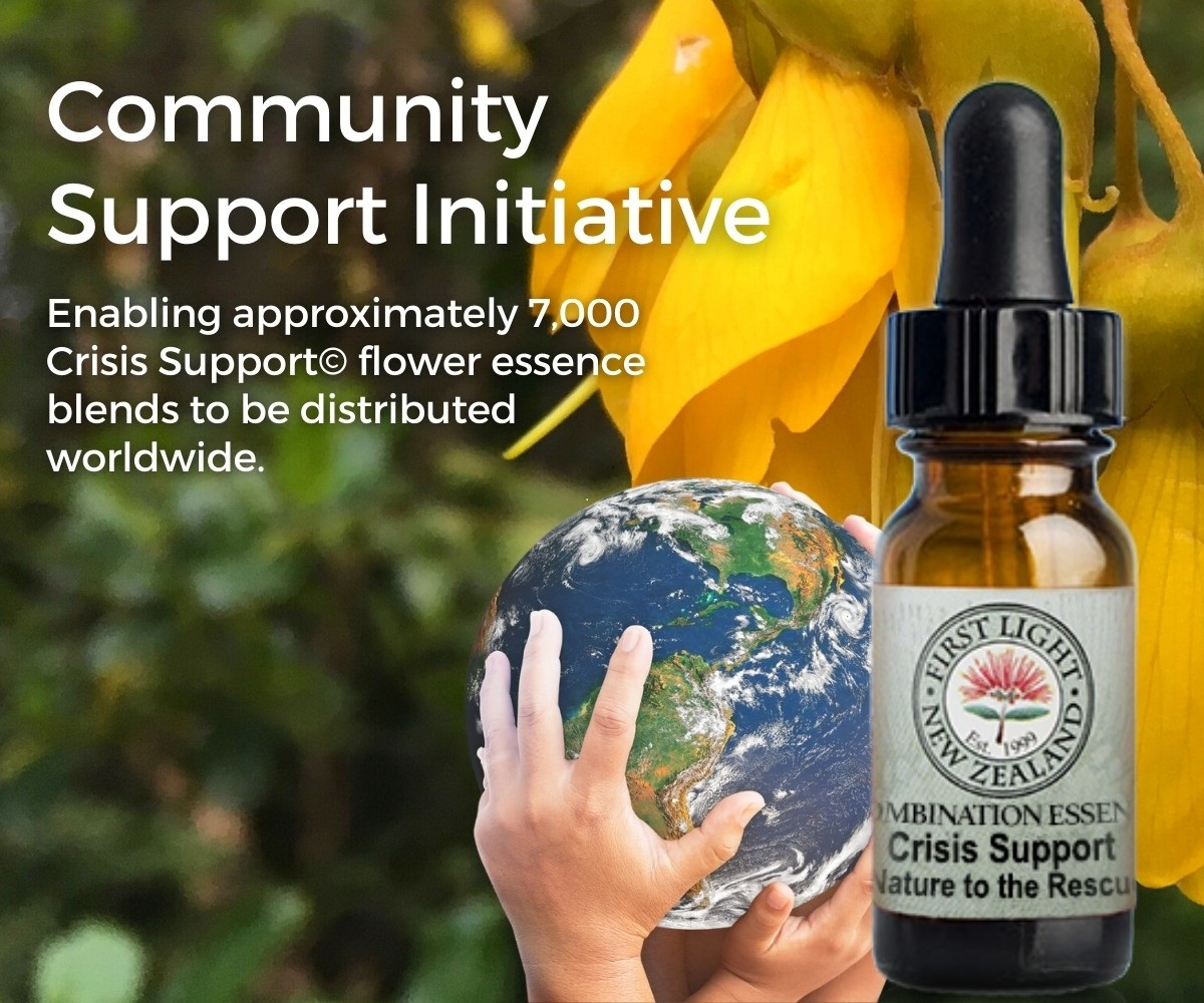 Community Support Initiative