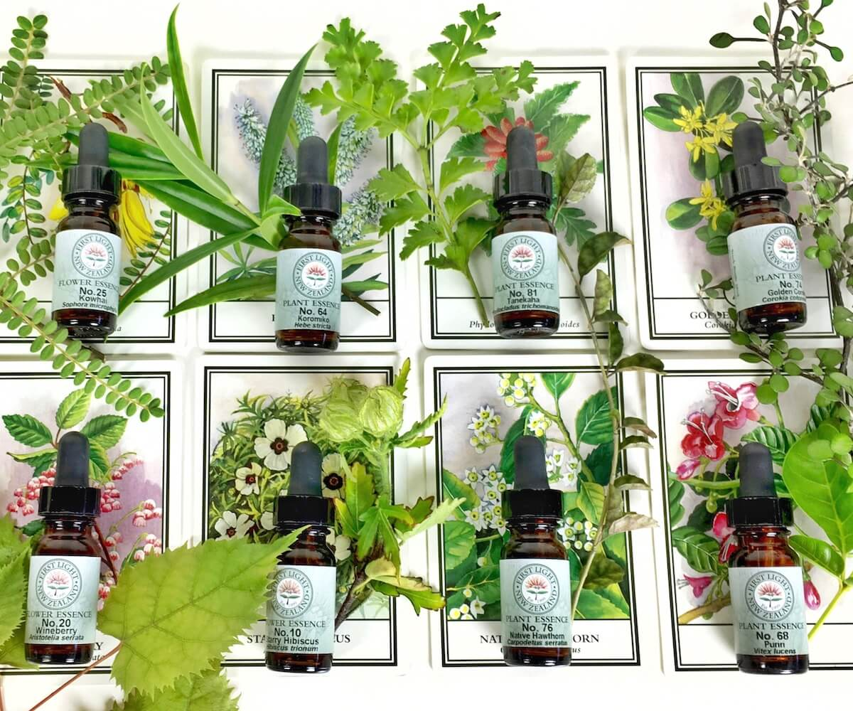 How To Select a First Light® Flower Essence For Yourself Or Another